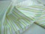 播州織 サッカー 黄緑×淡茶
