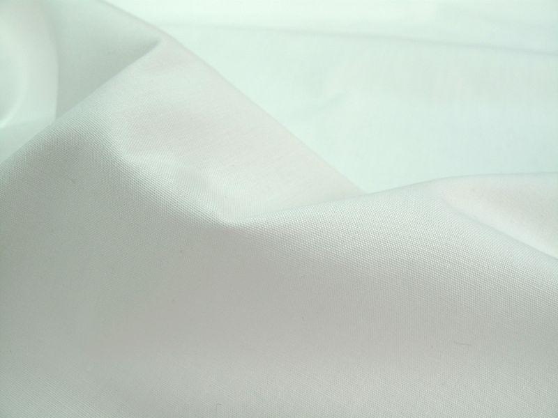 画像1: 播州織 ポプリン オーガニック ホワイト
